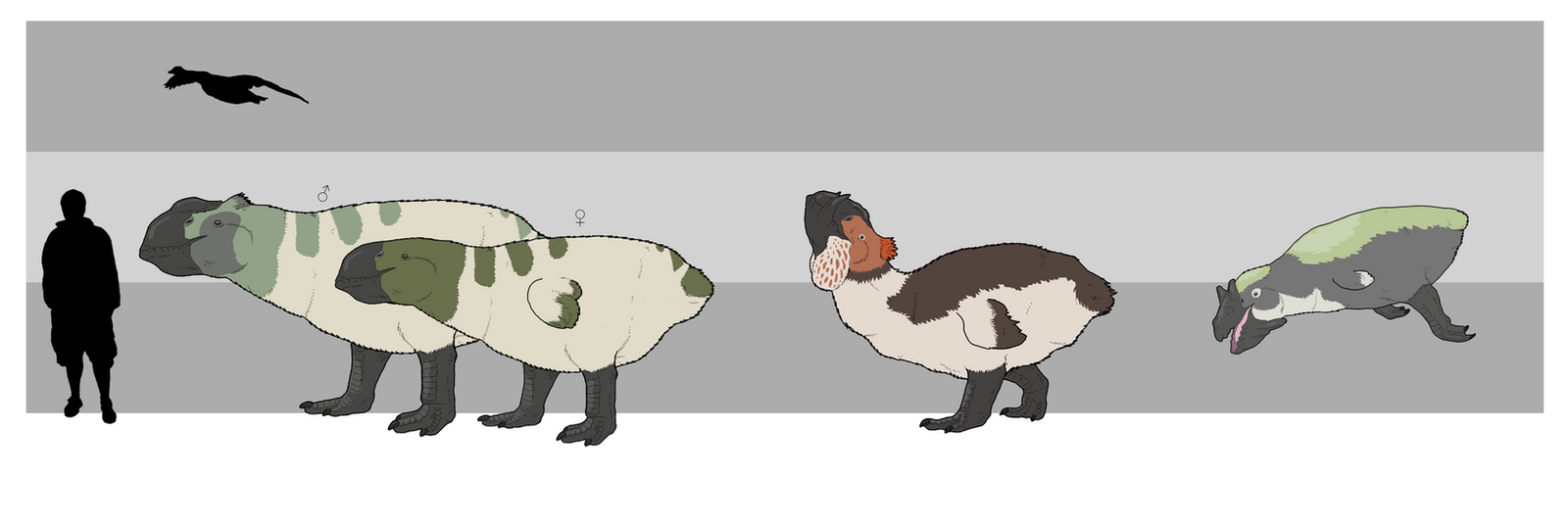 Megagoose Size Chart by WSnyder
