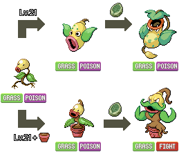 Bellsprout Branched Evolution by KajiAtsui