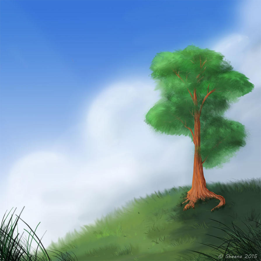 a Tree scenery - practice by Shcenz