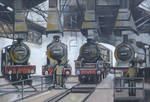 Steam Engine Shed