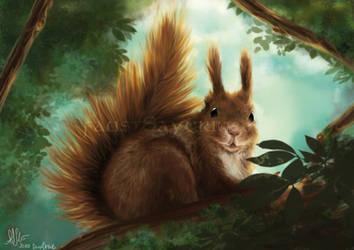 Squirrel by faust-sayuri