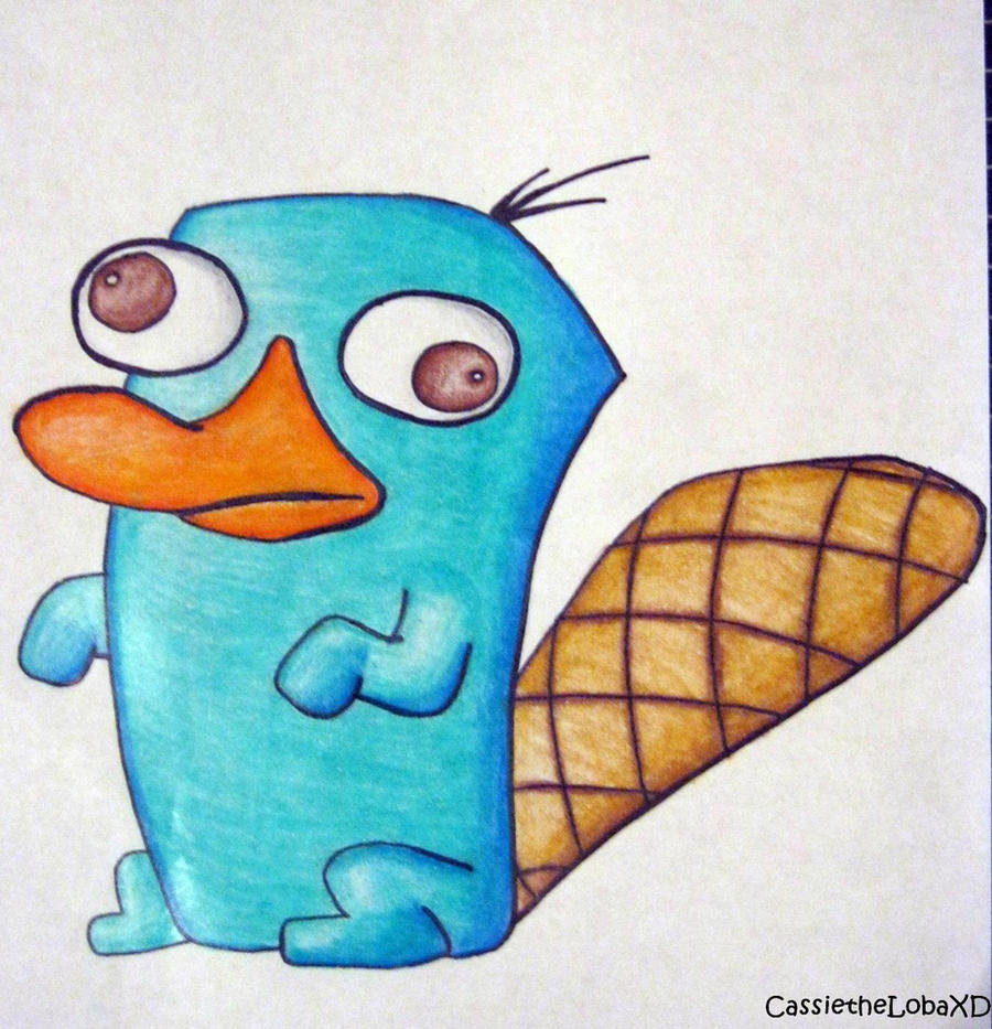 perry the platypus as a baby drawing