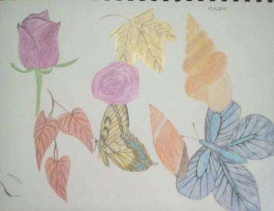 Colored Pencil Sktech by ciucamona