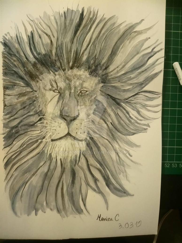 grey lion portrait  by ciucamona