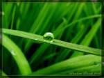 Rainy Time No. 2 by Lamia86