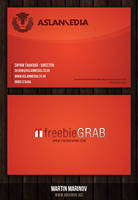 Aslanmedia Business Card by podmatrix
