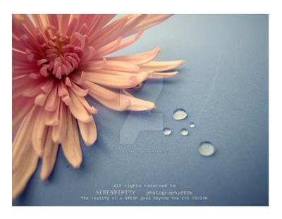 deeply..in LOVE by SEREN-D-IPITY