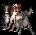 :Pups: