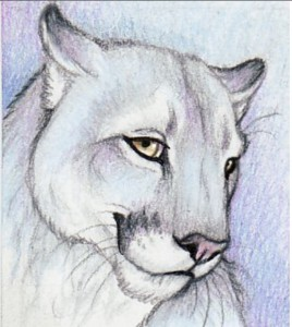 FrostPuma's Profile Picture
