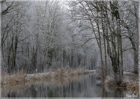 Winter world by KlaraDrielle
