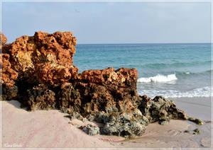 Ras al hadd beach by KlaraDrielle