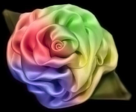 Windows Satin Rose by AbhishekGhosh