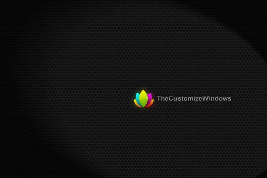The Customize Windows Branded Wallpaper