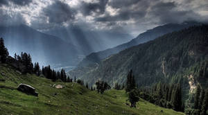Upper Shimla