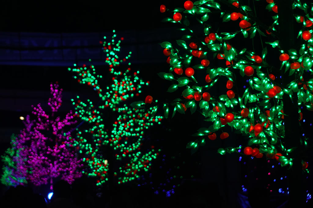 Lightworks Bokeh by AbhishekGhosh
