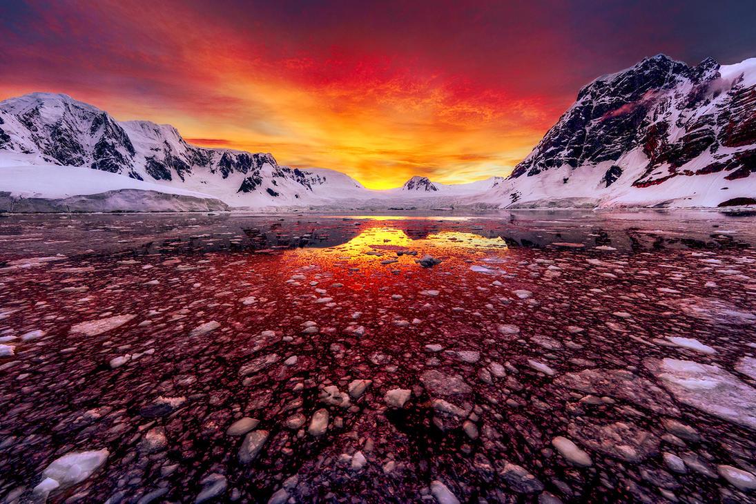 Забавное, интересное, шокирующее - Страница 4 Antarctic_sunrise_by_paulmp-dbwik6z