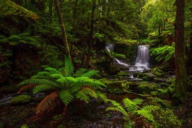 Horseshoe Falls, Tasmania by paulmp
