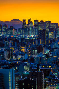 Sunset over Tokyo and Mt Fuji