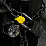 Locked Autumn by Toni-R