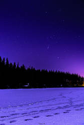 Under Starlit Sky
