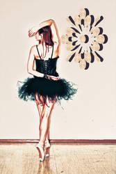 Black Swan Stock 16 By Aehireiel Stock-d4sabtb