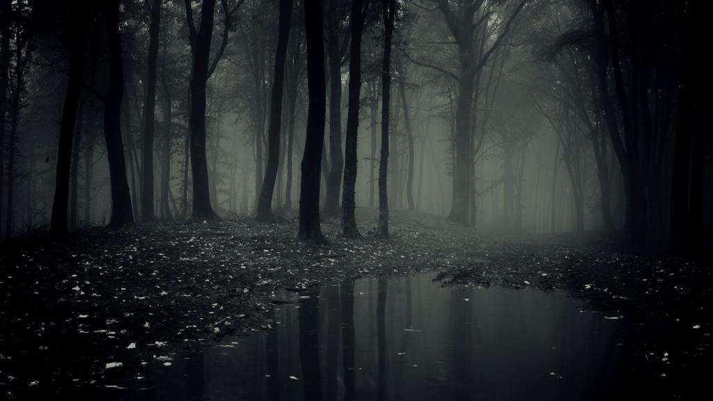 Scary-dark-forest-desktop by nitchwarmer
