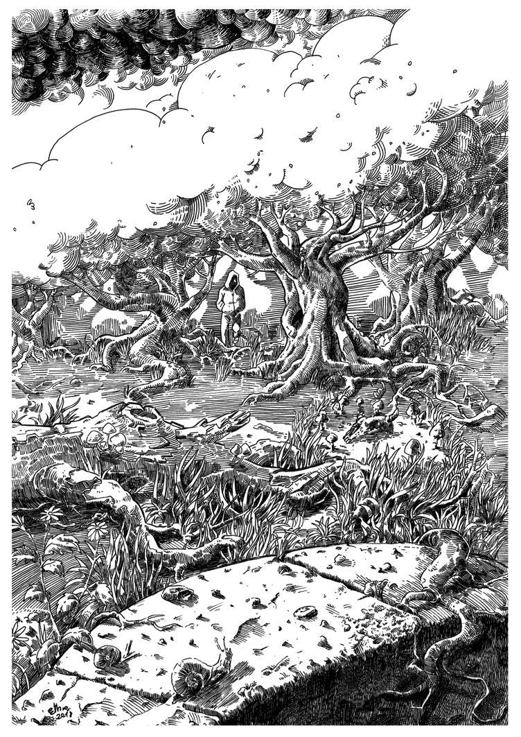 forest by R-ethro