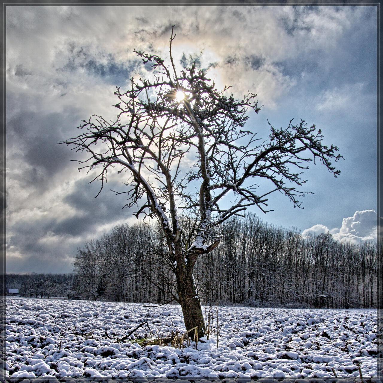 winter part 1 jm1375 by joergens-mi
