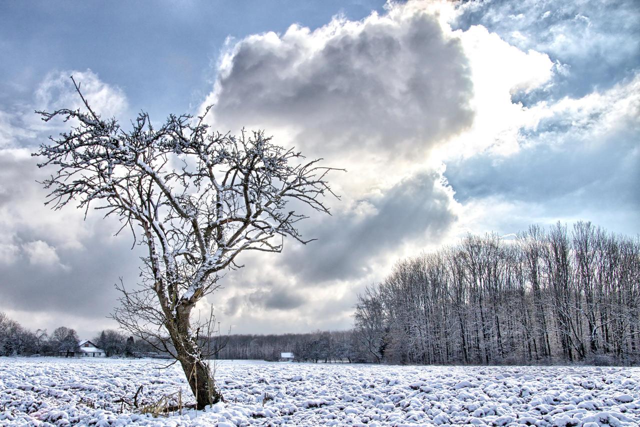 Winter part 2 jm1508 by joergens-mi