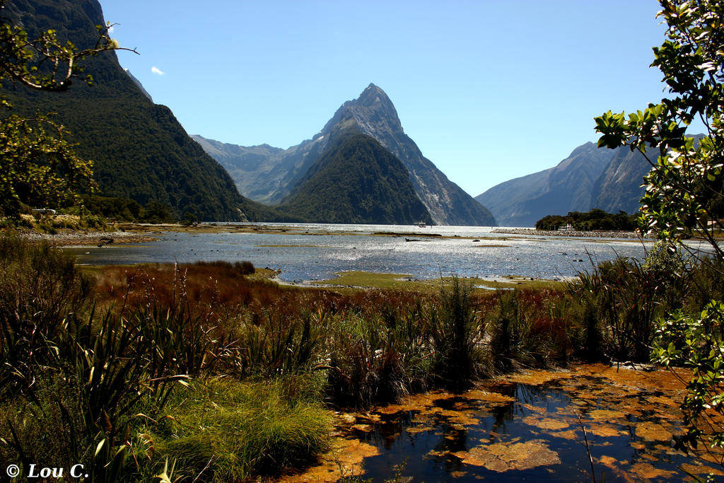 Milford Sound by petimouton