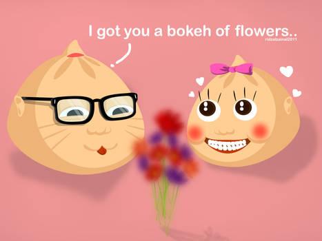 Bokeh of Flowers