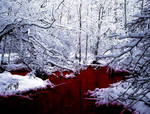 SCP-354  The Red Pool