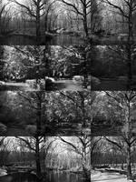 twelve frames - twelve months by kuru93