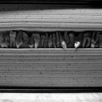 bibliophobia by kuru93