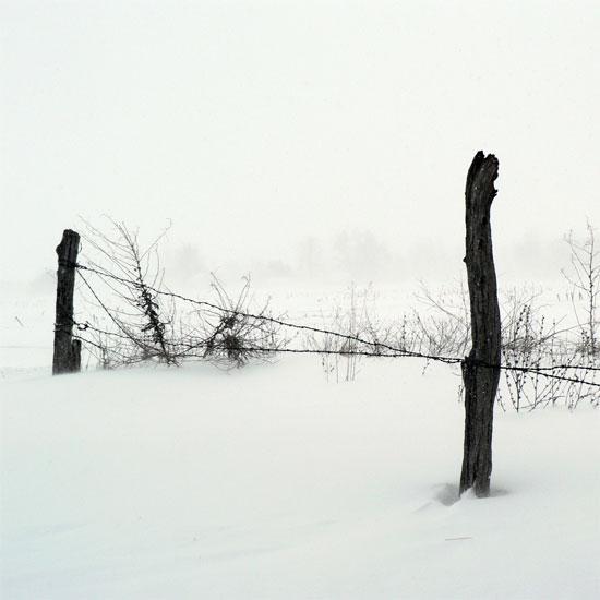 in the snow by kuru93