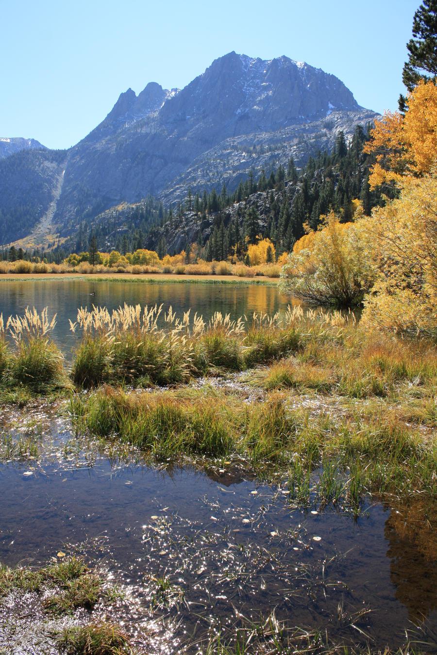 Fall At Silver Lake by goatgirlart