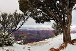 March Snow At The Grand Canyon