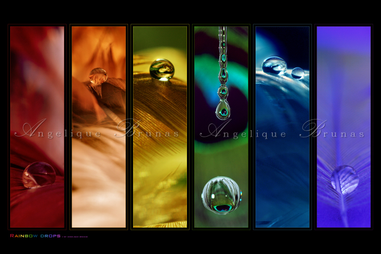 :: Rainbow drops ''' :: by Liek
