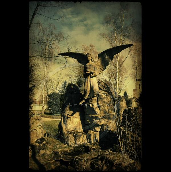 :: Angel' :: by Liek