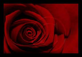 :: Rosso :: by Liek