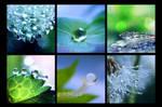 :: H2O' :: by Liek