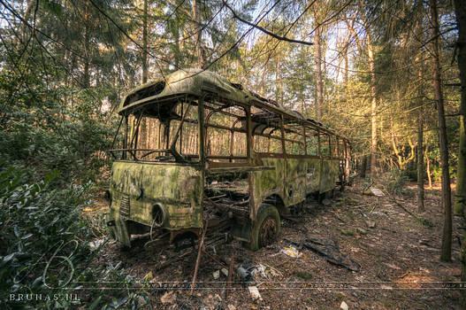 Jungle bus by Liek