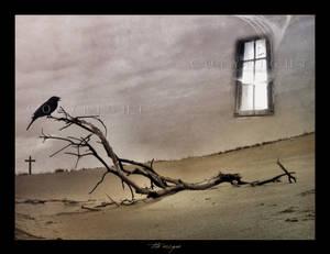 :: The escape ::