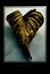 :: When love dies ... ::
