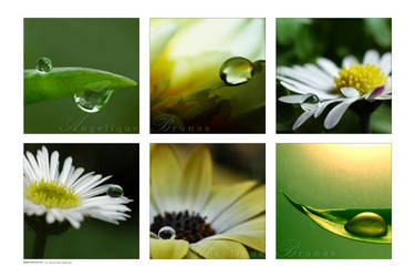 :: Dropshots' :: by Liek