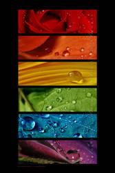:: Rainbow drops '' ::