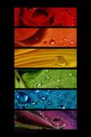 :: Rainbow drops '' :: by Liek