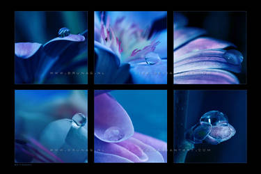 :: Blue :: by Liek