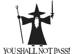 You Shall Not Pass! - Gandalf - LOTR