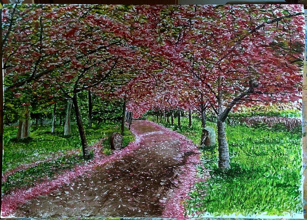 I love sakura by ErvinOgrasevic